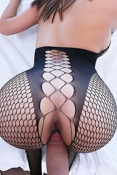 Aaliyah Hadid Fucking In Fishnet